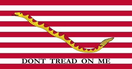 The First Navy Jack.